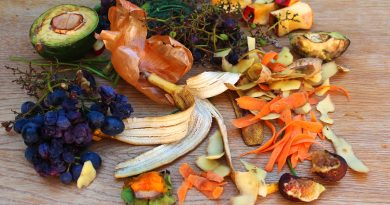 7 ways to fight food waste